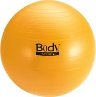 BodySport Standard Fitness Ball 65 cm Medium 500 lbs